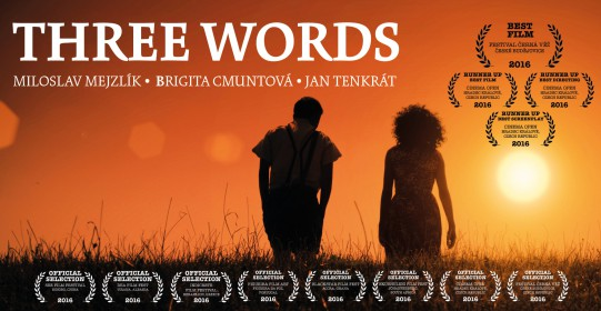 screen-words